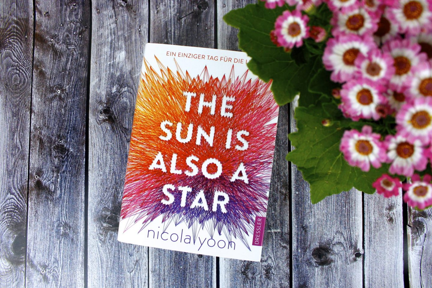 The Sun is also a Star – Nicola Yoon