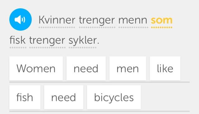 Duolingo Norwegisch